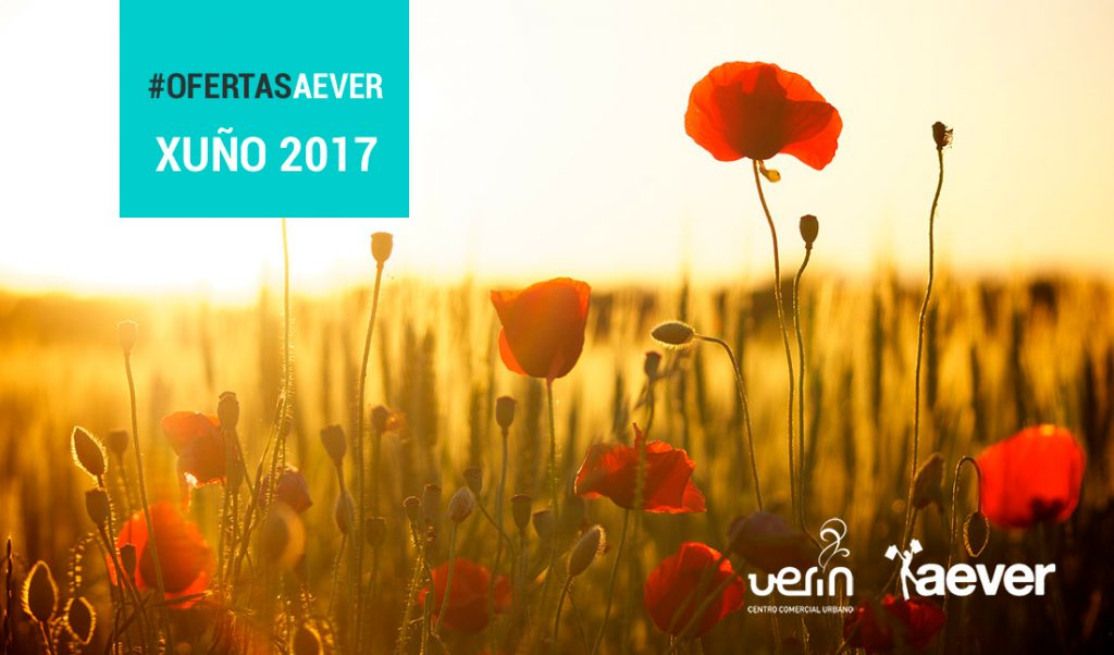 Ofertas Verín Aever Junio 2017